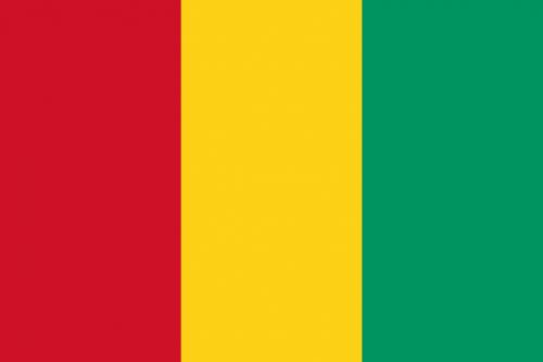 Bandiera Guinea