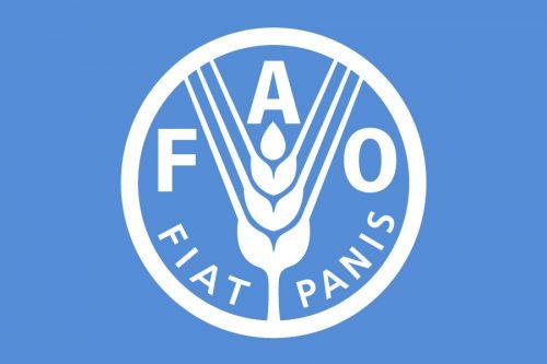 bandiera-FAO